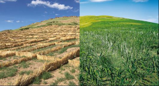 土壤修复-湖北灏瑞达环保能源科技有限公司